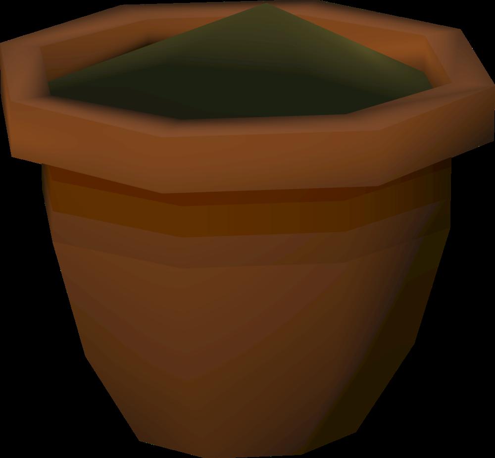 Seedling sapling
