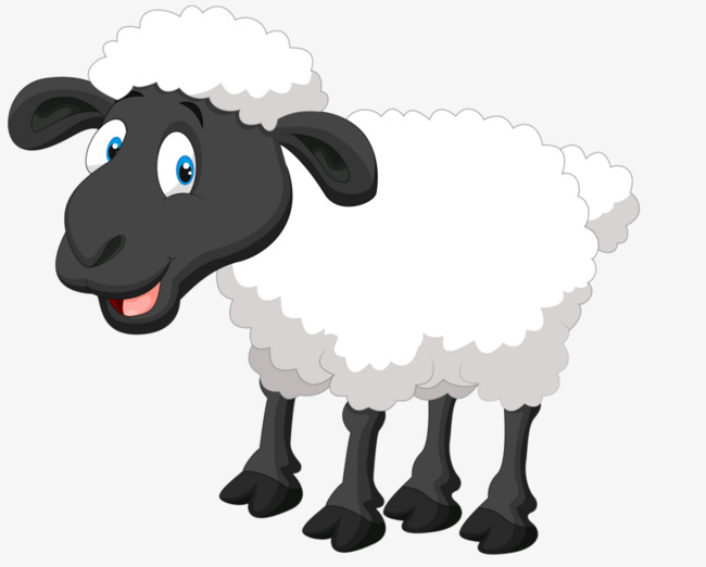 Sheep clipart fluffy sheep. Png free transparent images