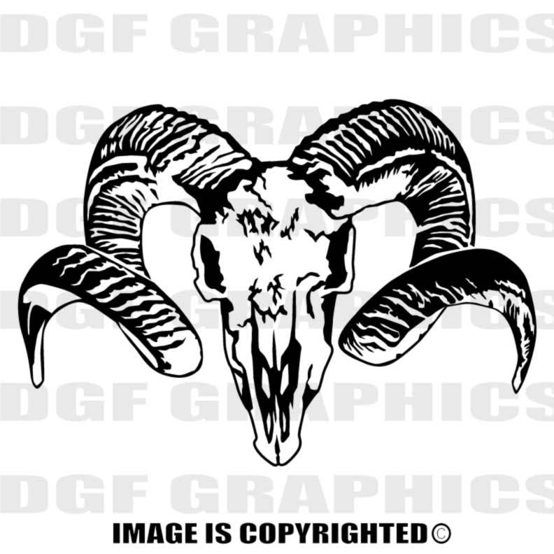 Bighorn ram custom personalized. Sheep clipart skull