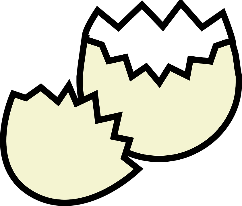 Collection of cartoon eggs. Shell clipart animated