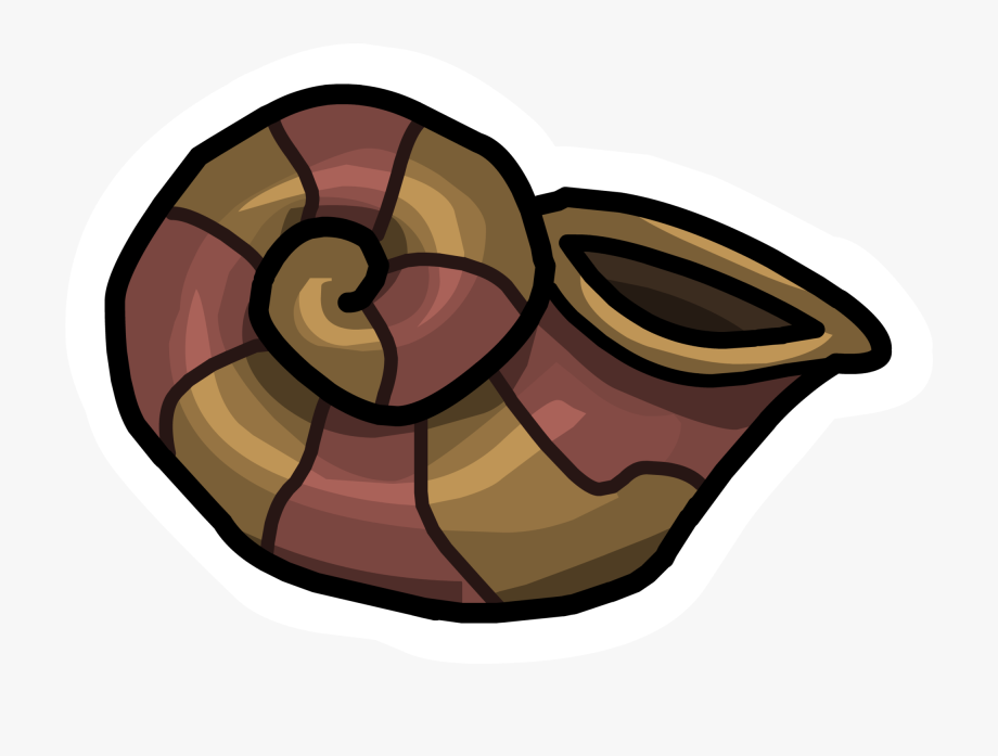 Conch free cliparts on. Shell clipart animated