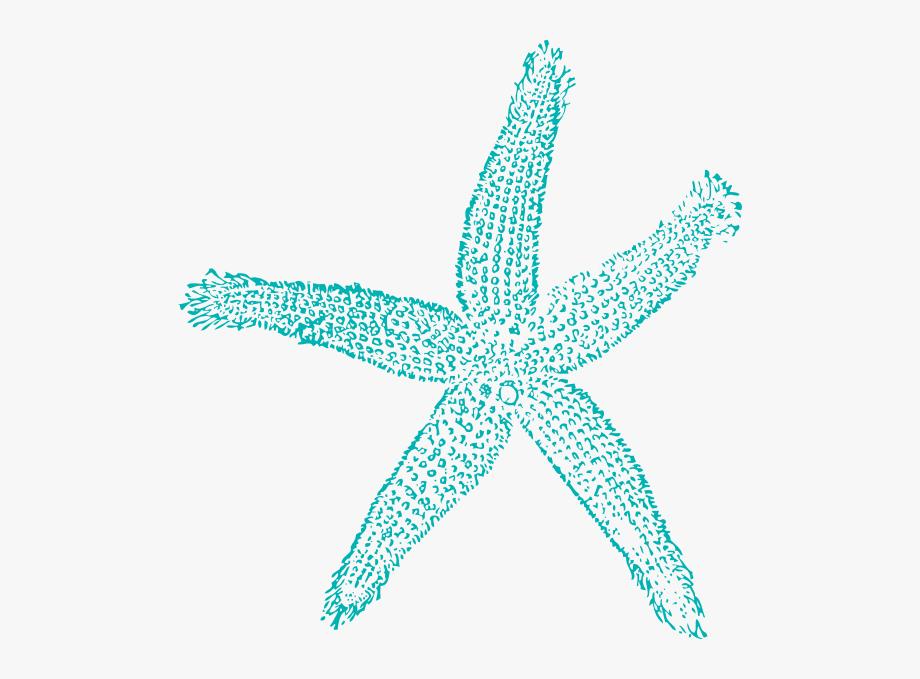 Clip art free cliparts. Shell clipart blue sea