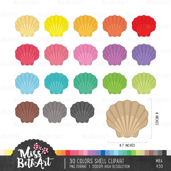 Shell clipart colorful.  color instant download