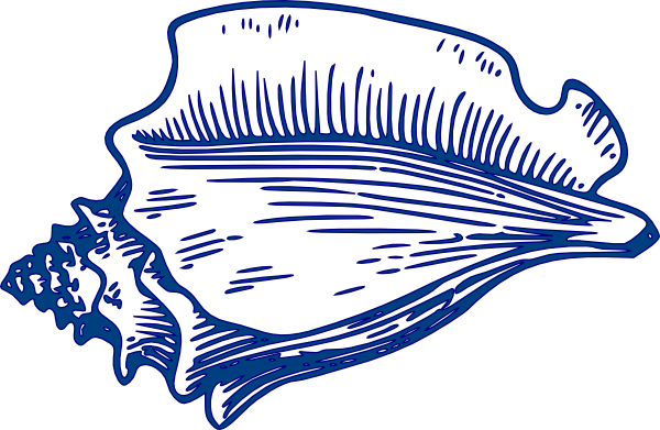 Clip art at clker. Shell clipart conch