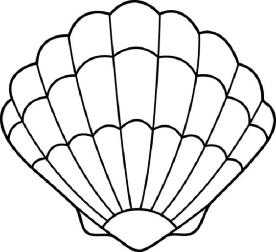 Clam cutout seashell babyshower. Shell clipart cut out