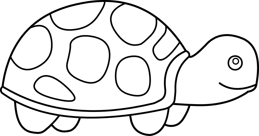 Shell clipart cute. Turtle free on dumielauxepices