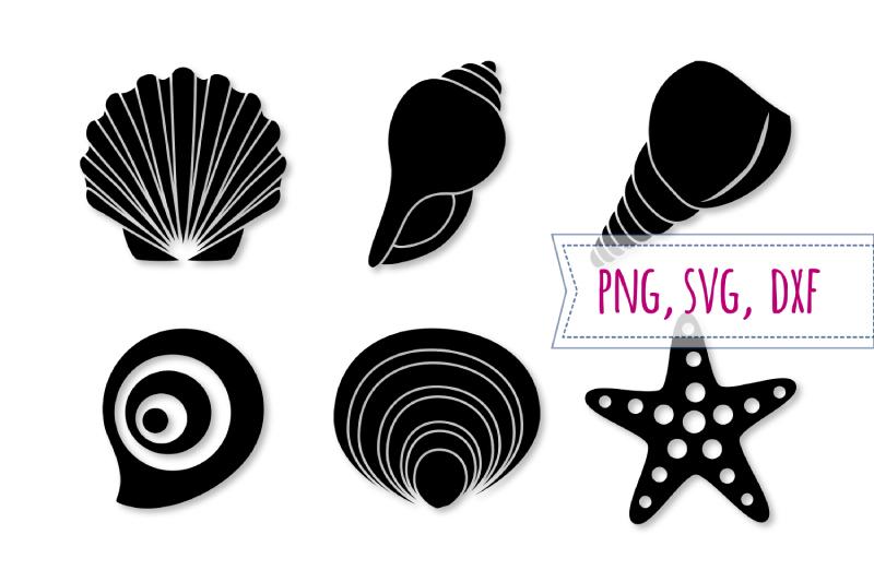 Svg set starfish seashell. Shell clipart design
