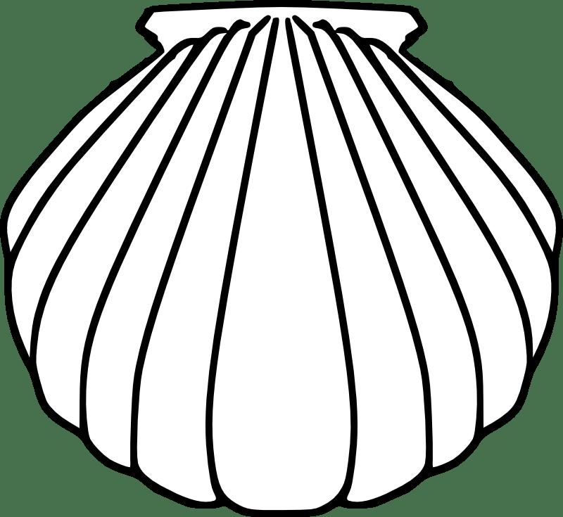 Baptism clip art . Shell clipart escallop