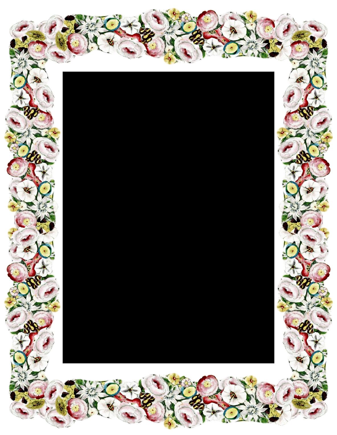 Free digital vintage flower. Shell clipart frame