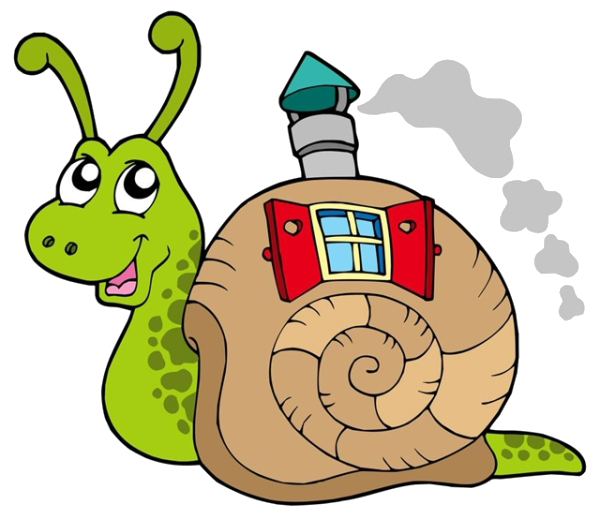 Snail stock photography royalty. Shell clipart gastropod