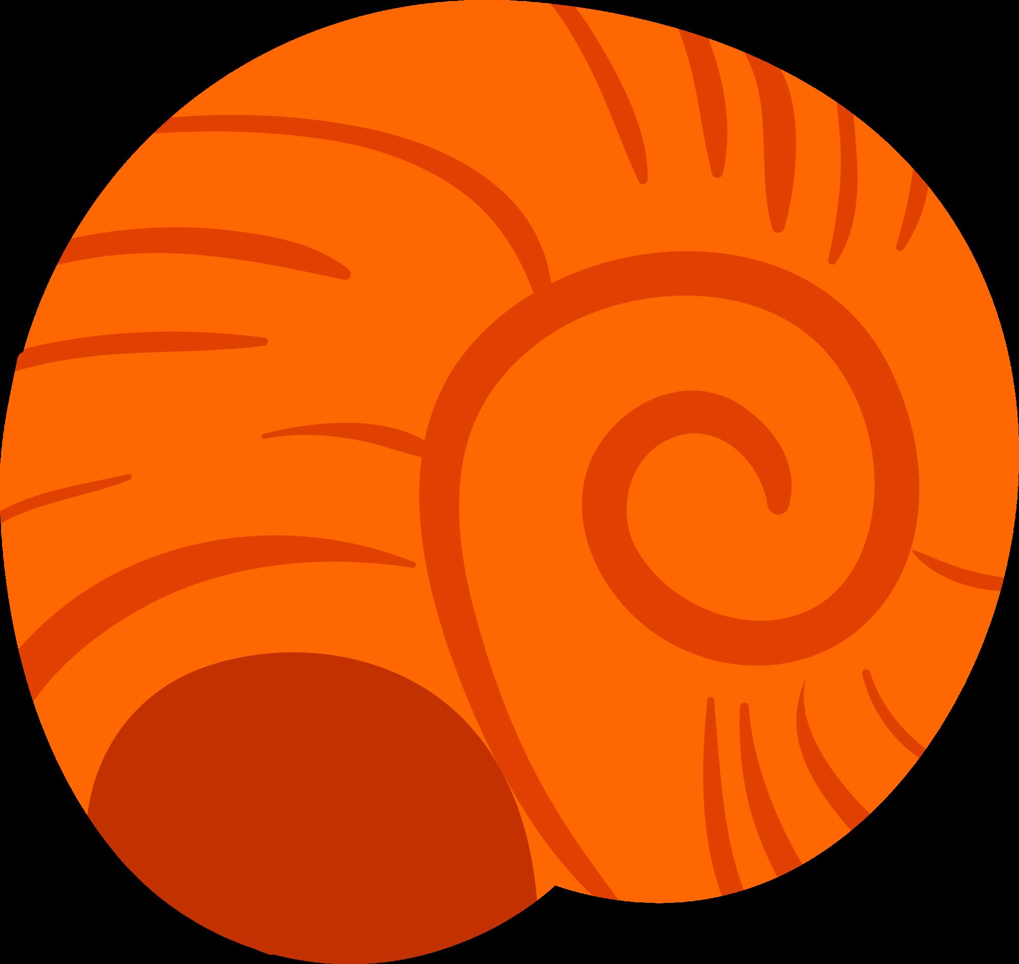 Gastropods cartoon snail orange. Shell clipart gastropod