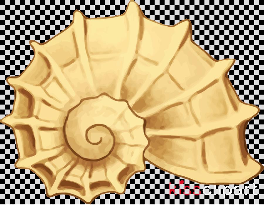 Sheshells seashell clip art. Shell clipart gold clipart