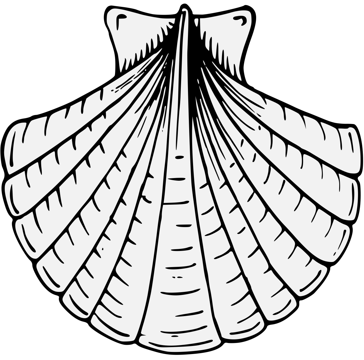 Shell clipart heraldry. Complete guide to line