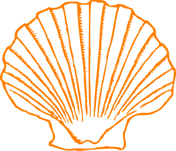 Shell clipart line. Clip art at clker