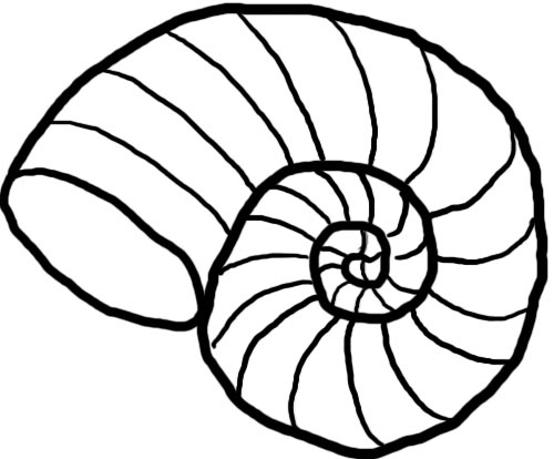 Shell clipart lineart. Free sea download clip