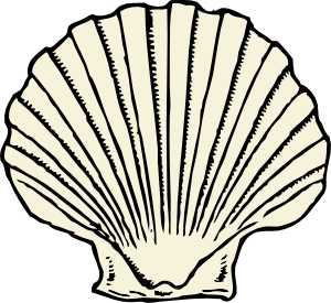 Scallop clip art at. Shell clipart lineart