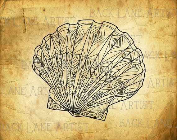 Shell clipart lineart. Vintage sea illustration by