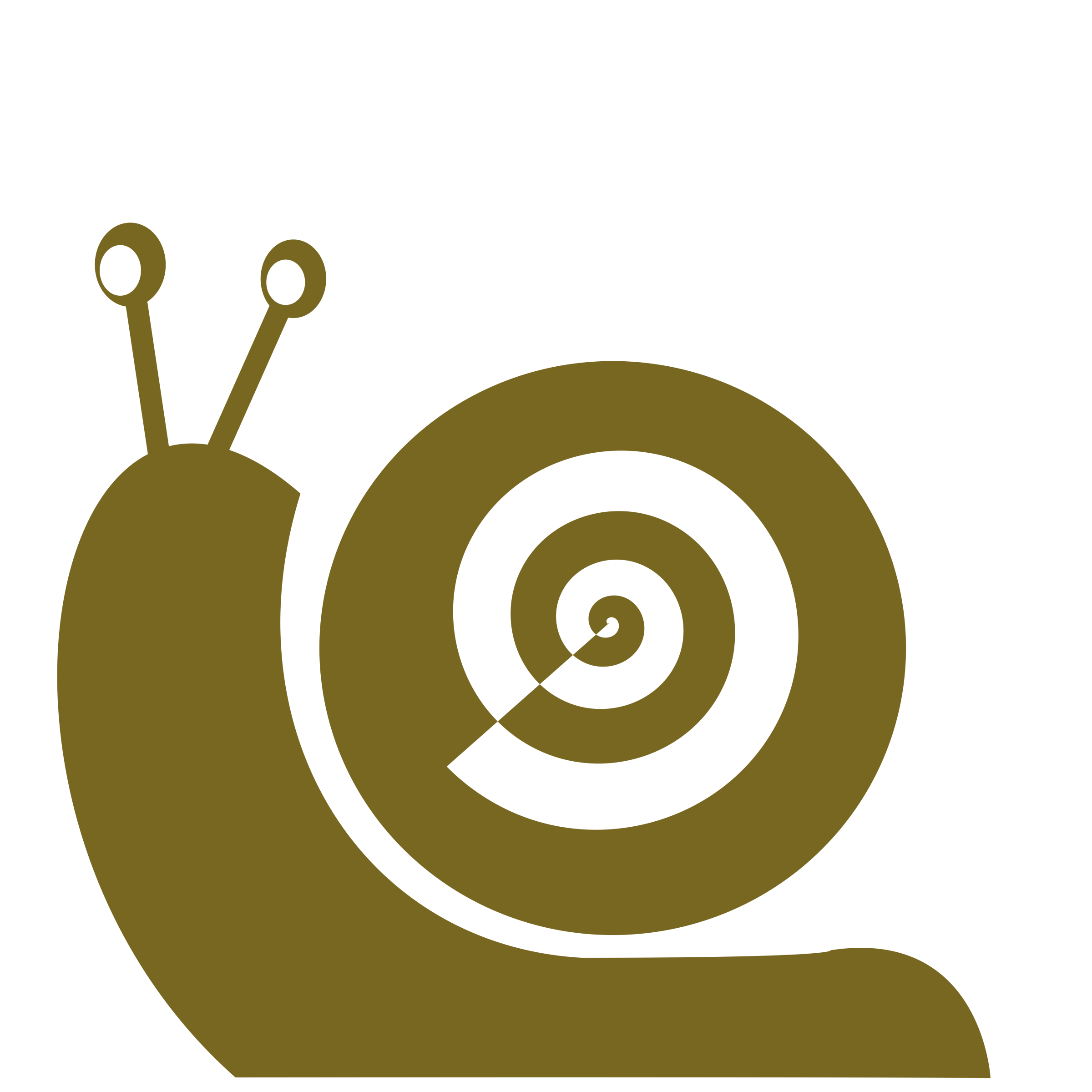 Shell clipart one color. Snail flat icons png