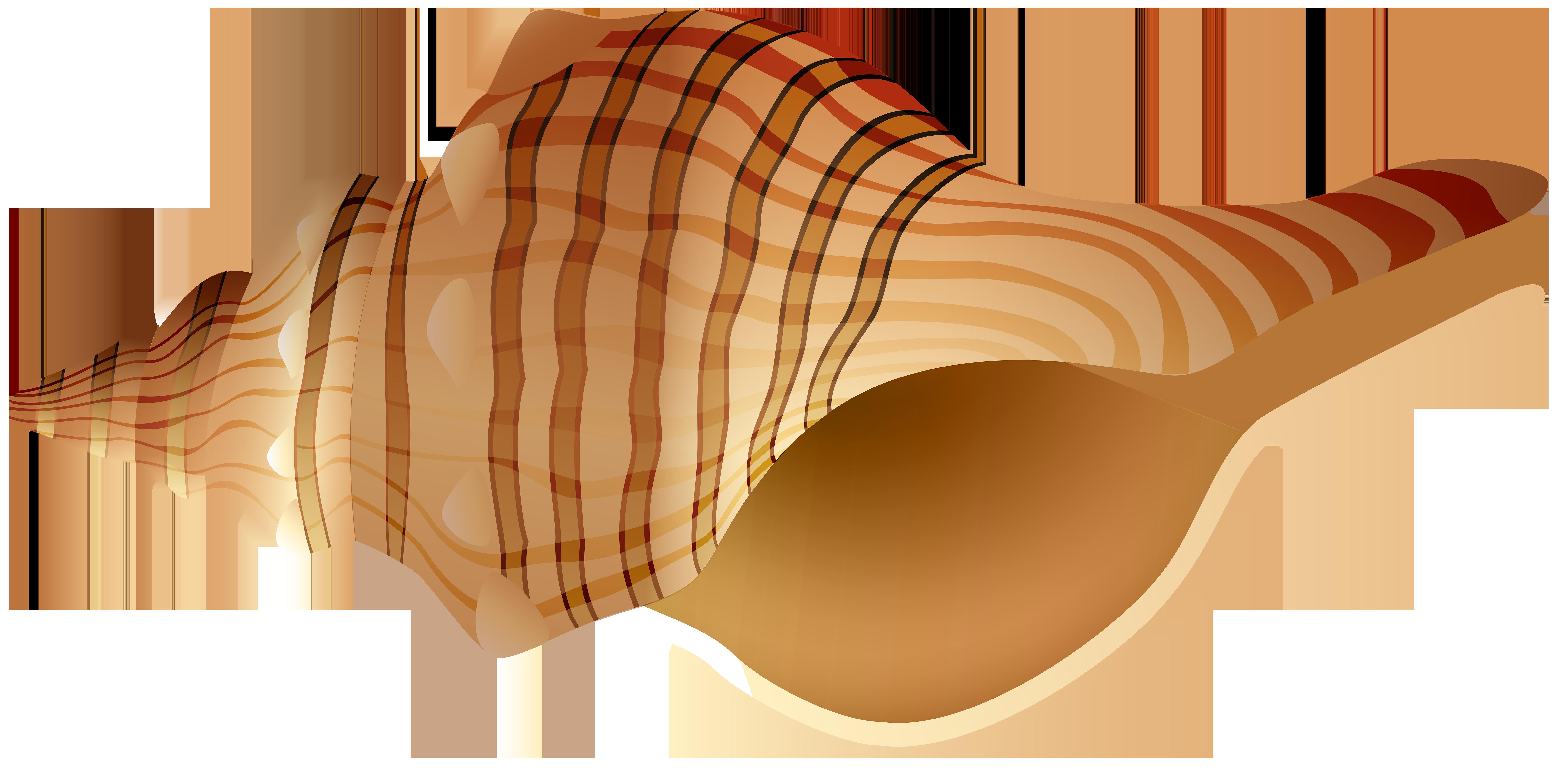 Rapane transparent png clip. Shell clipart orange clipart