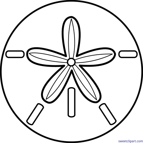 Shell clipart sand dollar. Sweet clip art page