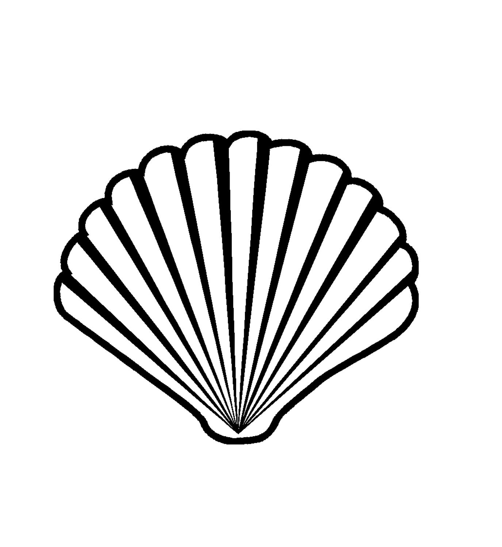 Shell clipart scallop stencil. Free cliparts download clip