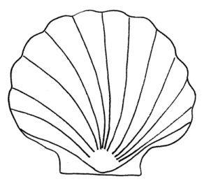 Template under the sea. Shell clipart scallop stencil