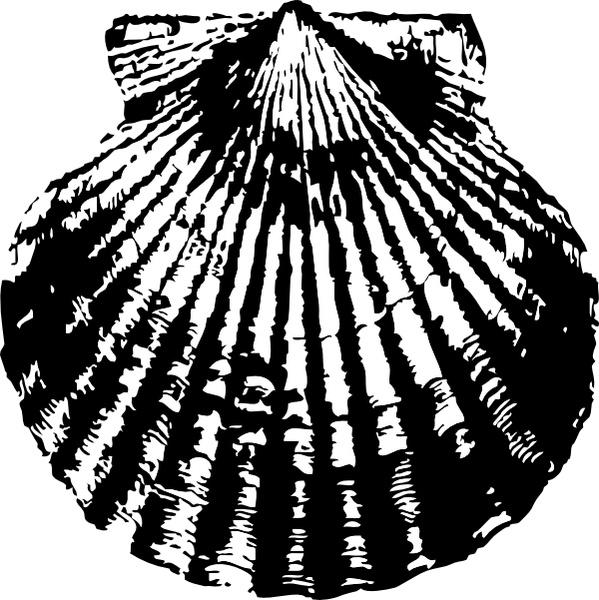 Shell clipart scallop symbol. Clip art free vector