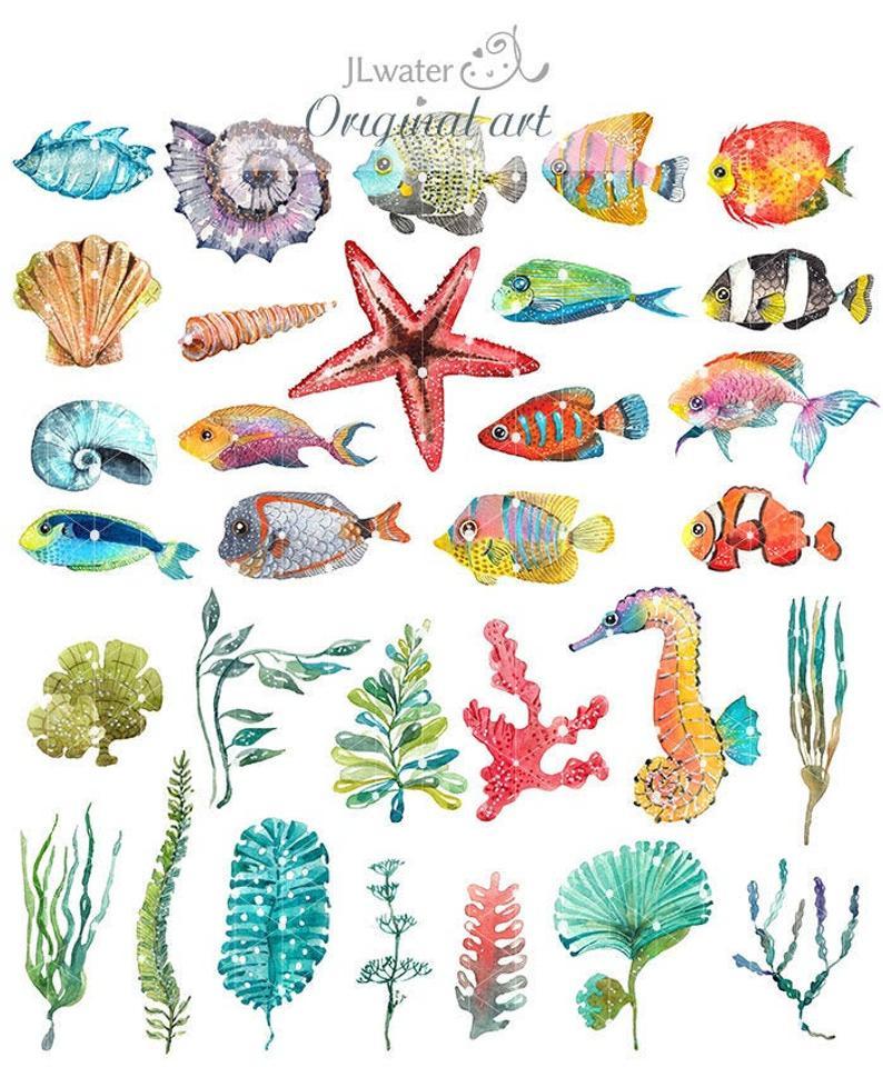 Shell clipart sea life. Watercolor ocean beach fish