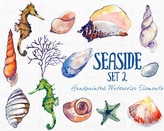 Shell clipart sea side. Watercolor shells instant digital