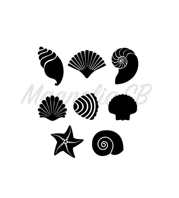 Sea shells svg dxf. Shell clipart shape