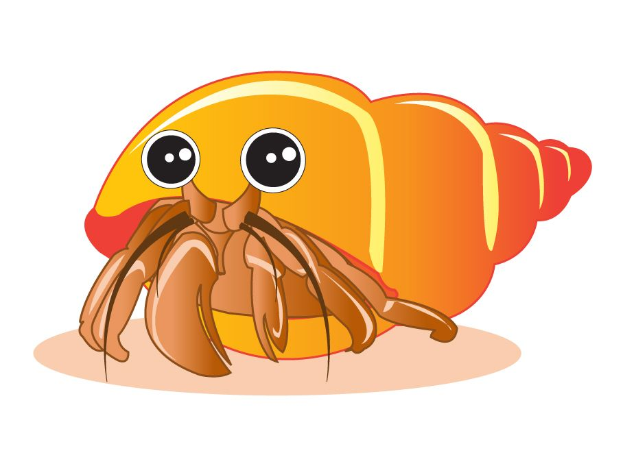 Shell clipart shell hermit crab. Draw a crabs drawings