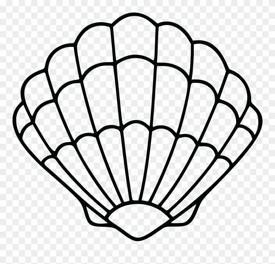 Shell clipart shell scallop.  free of a
