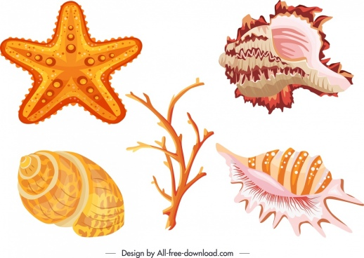 Vector for free download. Shell clipart starfish