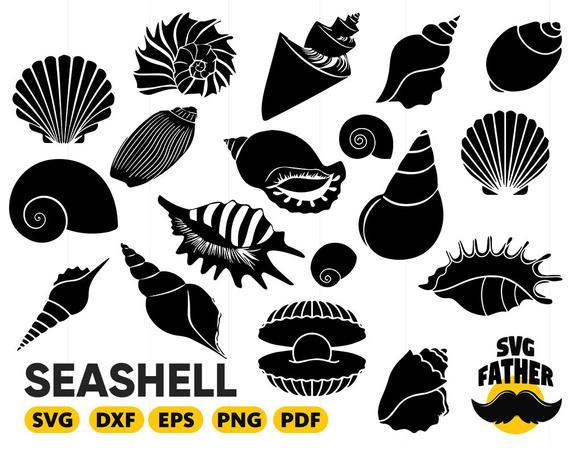 Shell clipart svg. Seashell silhouette beach