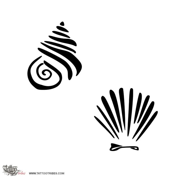 Shells jpg ideas . Shell clipart tattoo