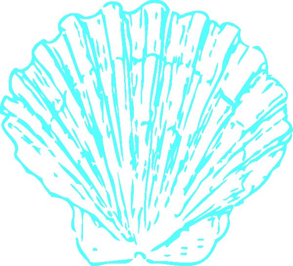 Aqua clip art at. Shell clipart teal