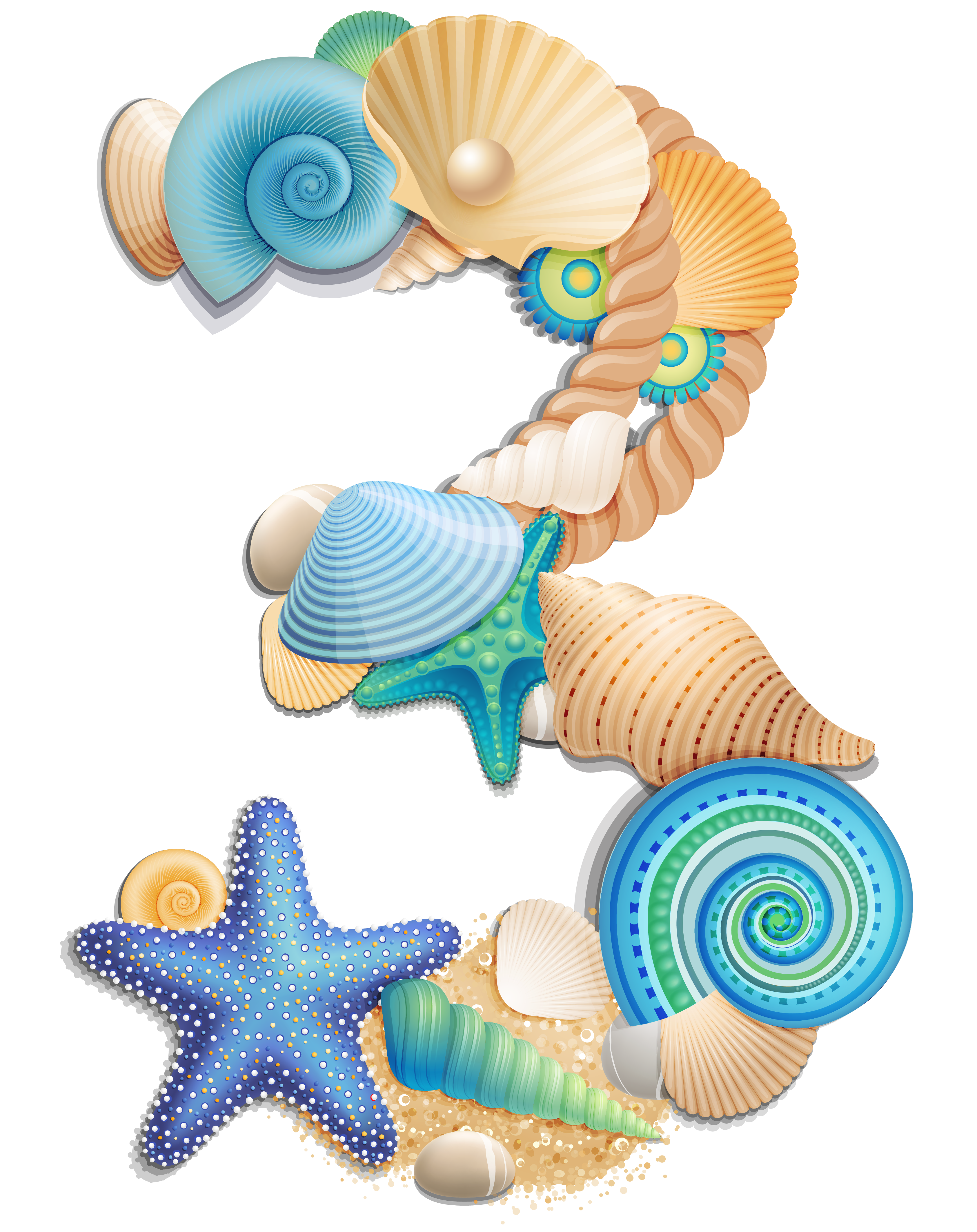 Transparent number three sea. Shell clipart turquoise