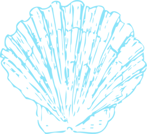 Shell clipart turquoise. Sea clip art library