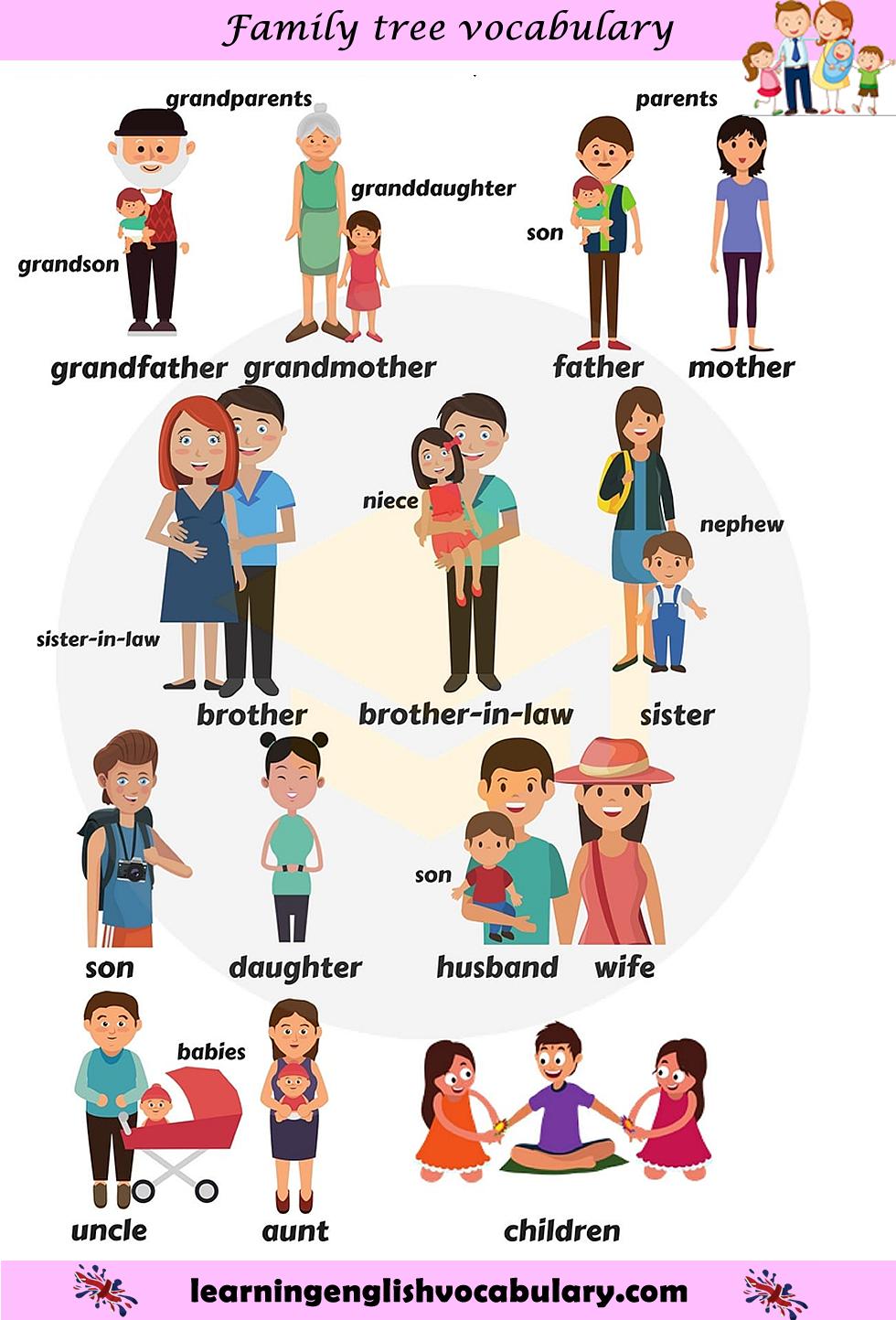 Short clipart family member. Members english vocabulary