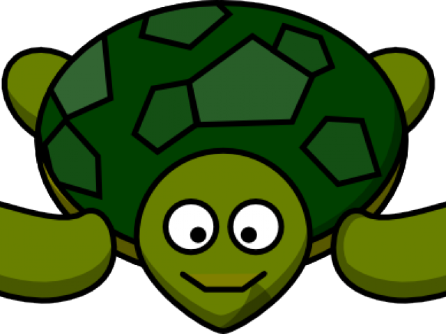 Cliparts x carwad net. Shy clipart turtle