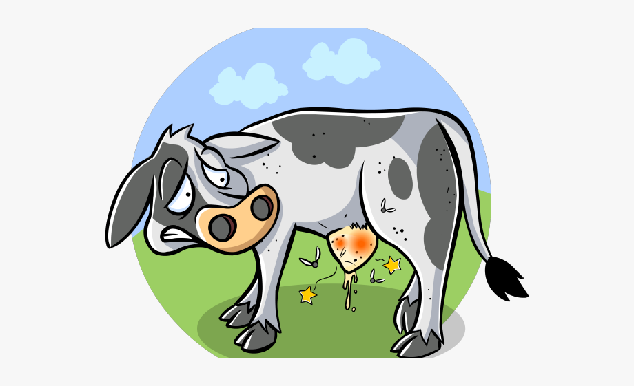 Drawn sick veterinary physician. Veterinarian clipart cow