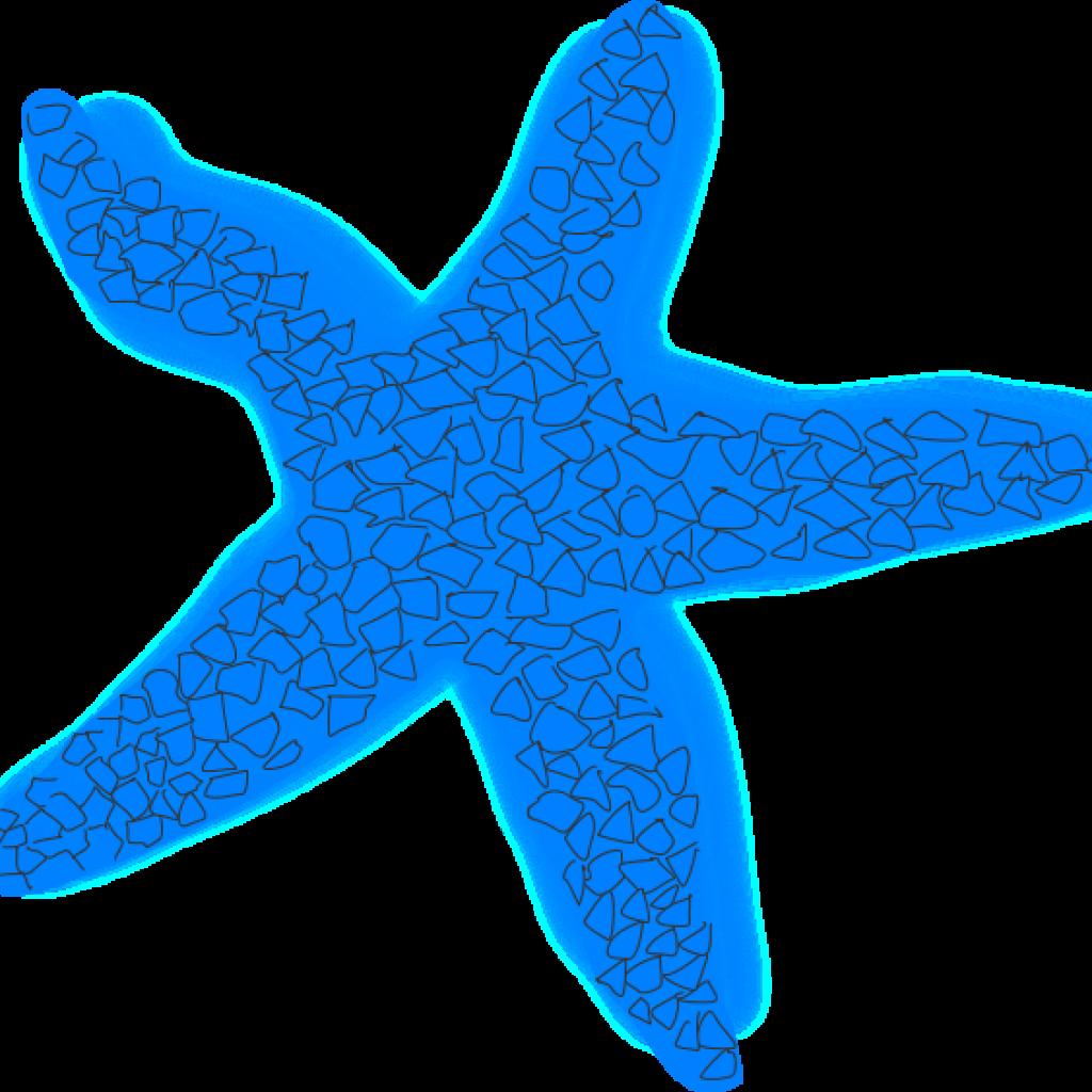 Silhouette clipart starfish. Hatenylo com blue clip