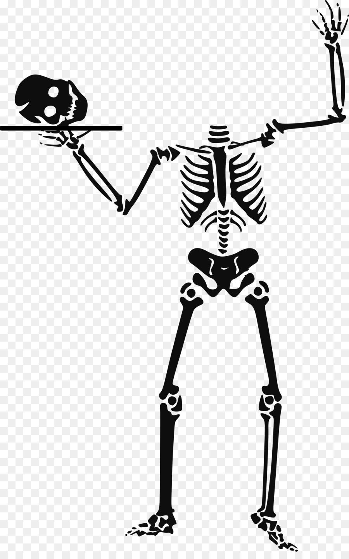 Skeleton clipart. Halloween human clip art