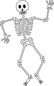 Skeleton clipart. Cartoon