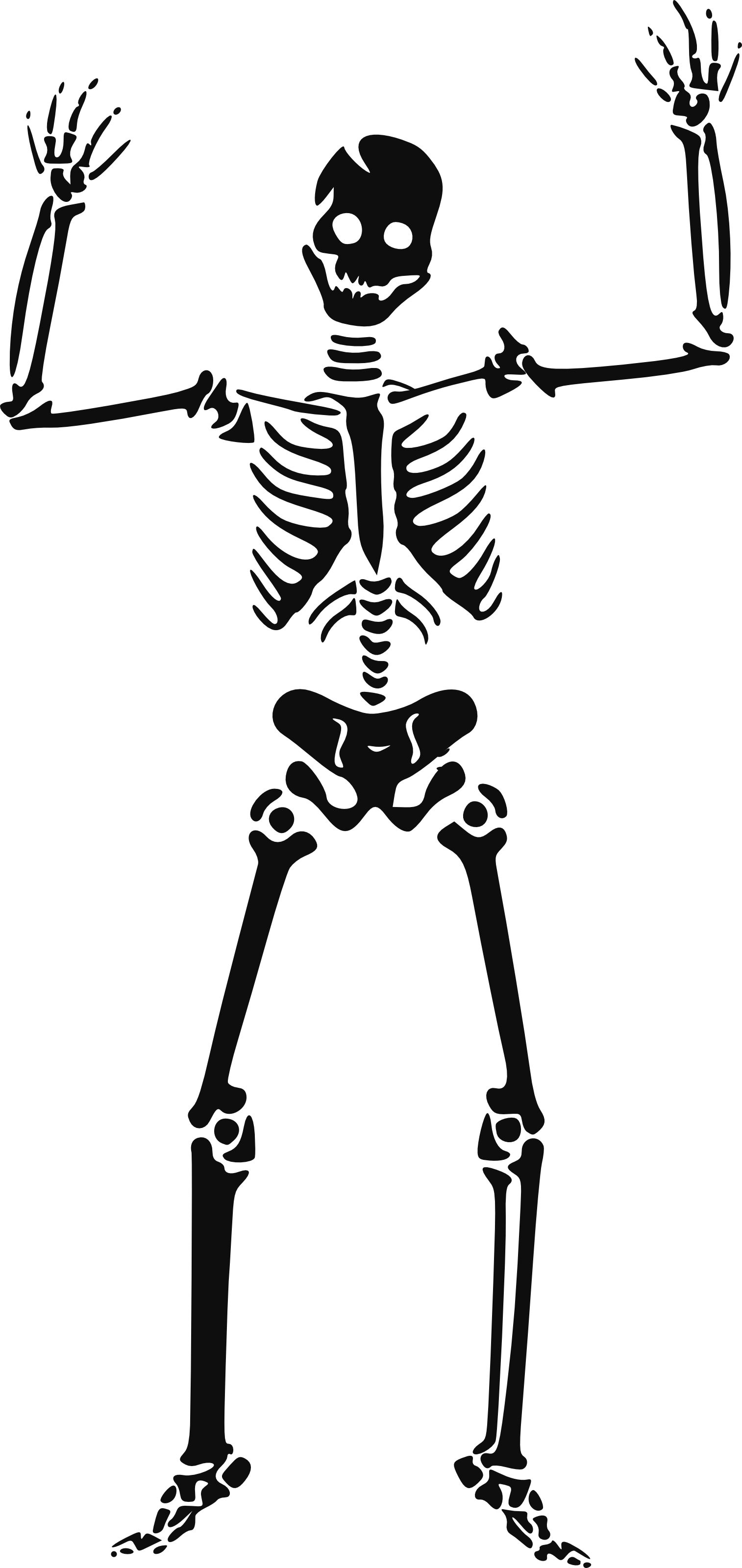 Gothic cliparts free download. Clipart skeleton empty