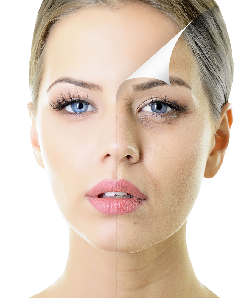 Skin clipart beautiful skin. Woman with half face