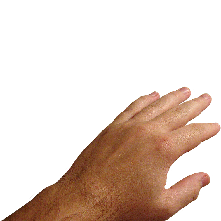 Hands png image purepng. Skin clipart big hand