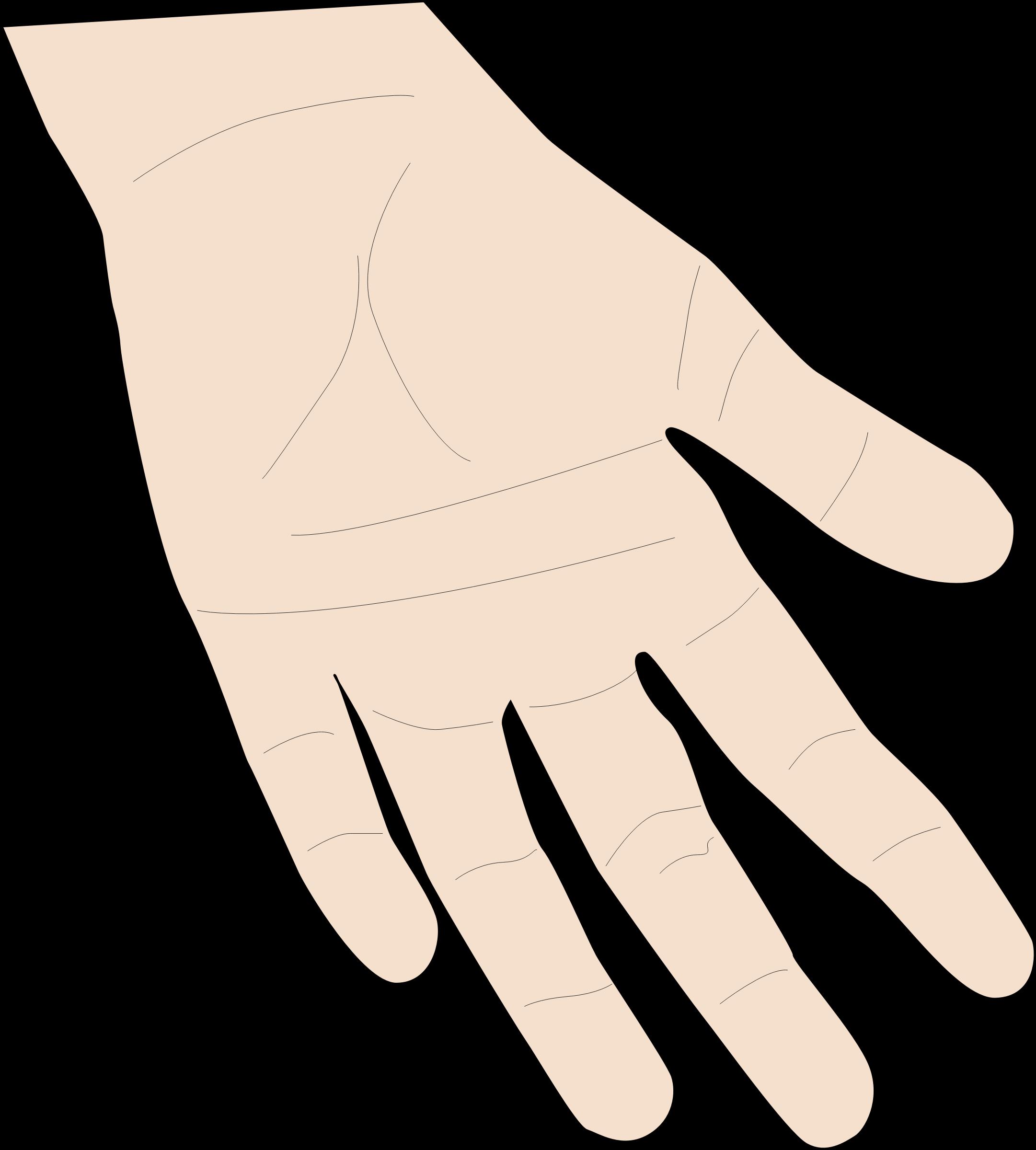 . Skin clipart big hand