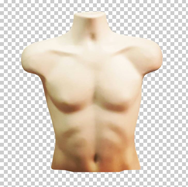 Torso shoulder thorax arm. Skin clipart body trunk