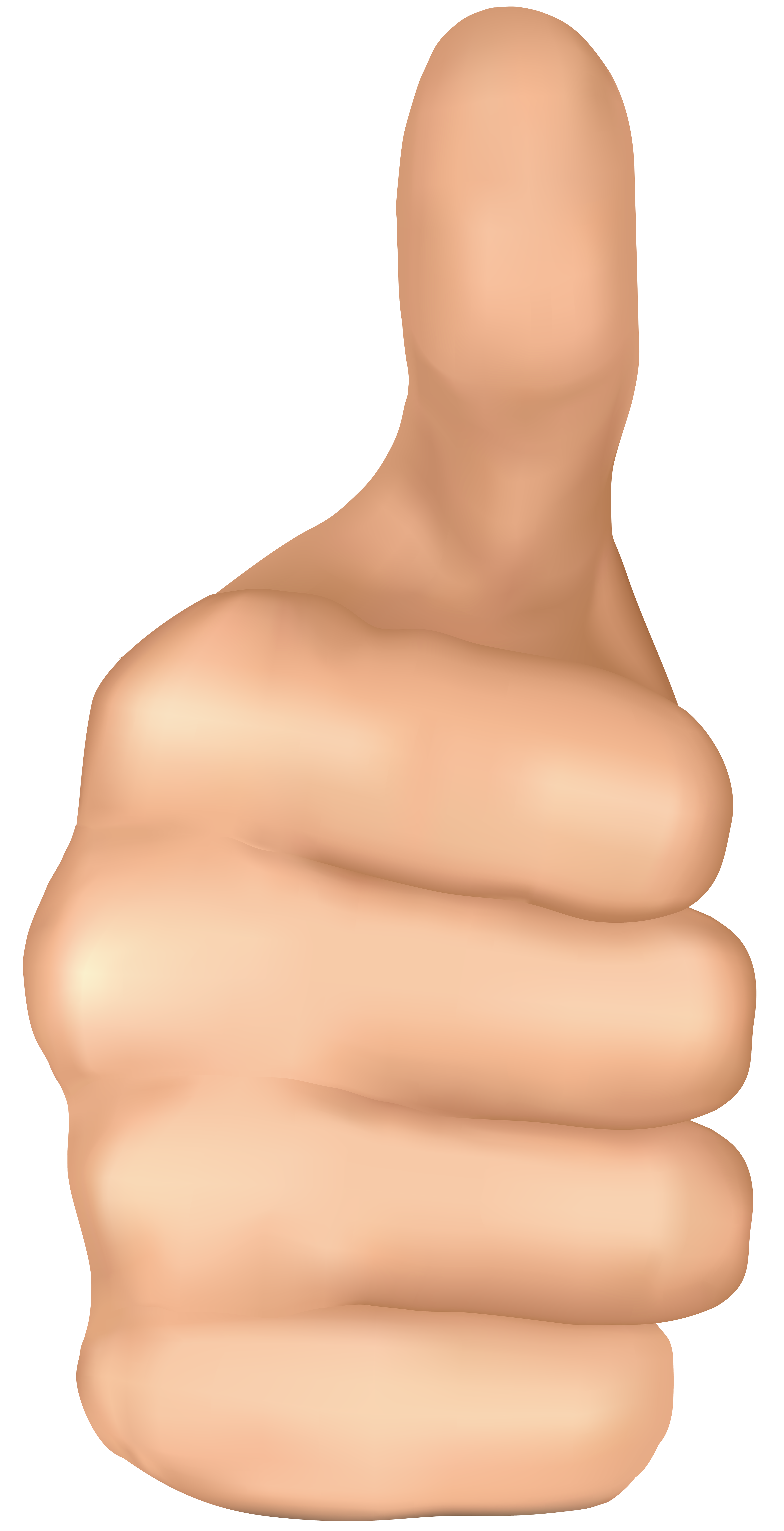 Skin clipart body trunk. Thumbs up hand png